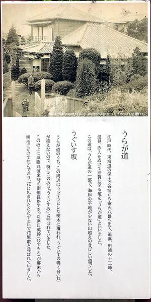 IMG_7030_.JPG